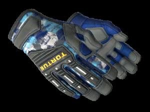ae7dc 300x225 - CSGO手套一览表
