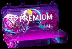 prem3 - CSGO开箱-蒸汽次元