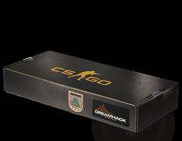 c32 - CSGO箱子