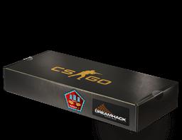 c33 - CSGO箱子