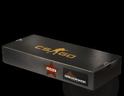 c35 - CSGO箱子